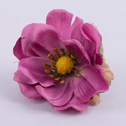 головка анемоны фиолетовая