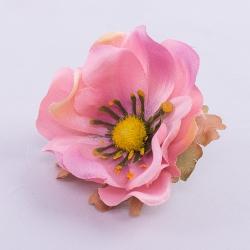 головка анемоны розовая