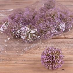 "Головка ""чеснок"" Lavender"