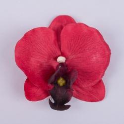 головка орхидеи красная