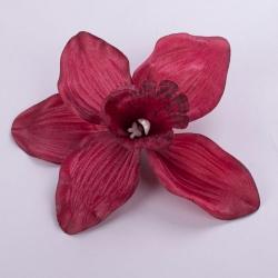 головка орхидеи бордо