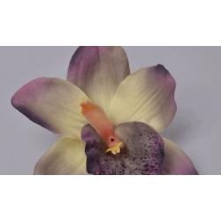 головка орхидеи бархатная