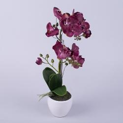 орхидея латексная в кашпо двойная (бургунди)