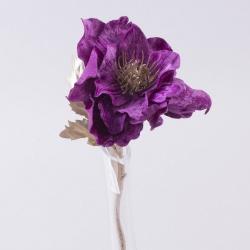 анемона бархатная (PU-01 - фиолетовая)