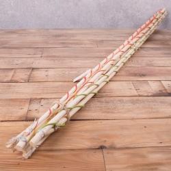 Бамбуковые палки белые купить. Бамбуковые палки для декора купить