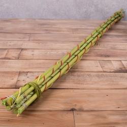 Бамбуковые палки салатовые купить. Бамбуковые палки для декора купить