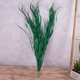 Сушенные листья пальмы для декора Одесса. Сухоцвет пальма для декора купить