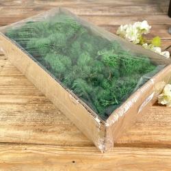 мох стабилизированный в упаковке темно зеленый 500 гр