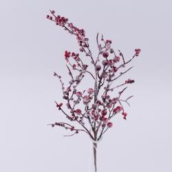 ветка с красными ягодами в снегу большая