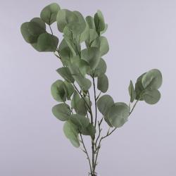 ветка большая эвкалипт ( зеленая)