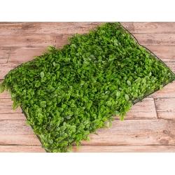 "квадрат травы ""самшит"" 40*60см"