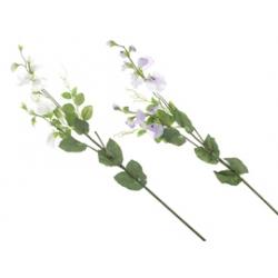 Цветы (одинарные)<br>