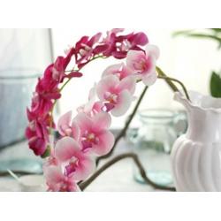 Искусственные орхидеи<br>