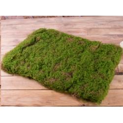 Стебли, ножки, квадраты травы, дополнители<br>