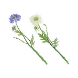 Декоративный цветок Жимолости, 2 вида - белый, васильковый